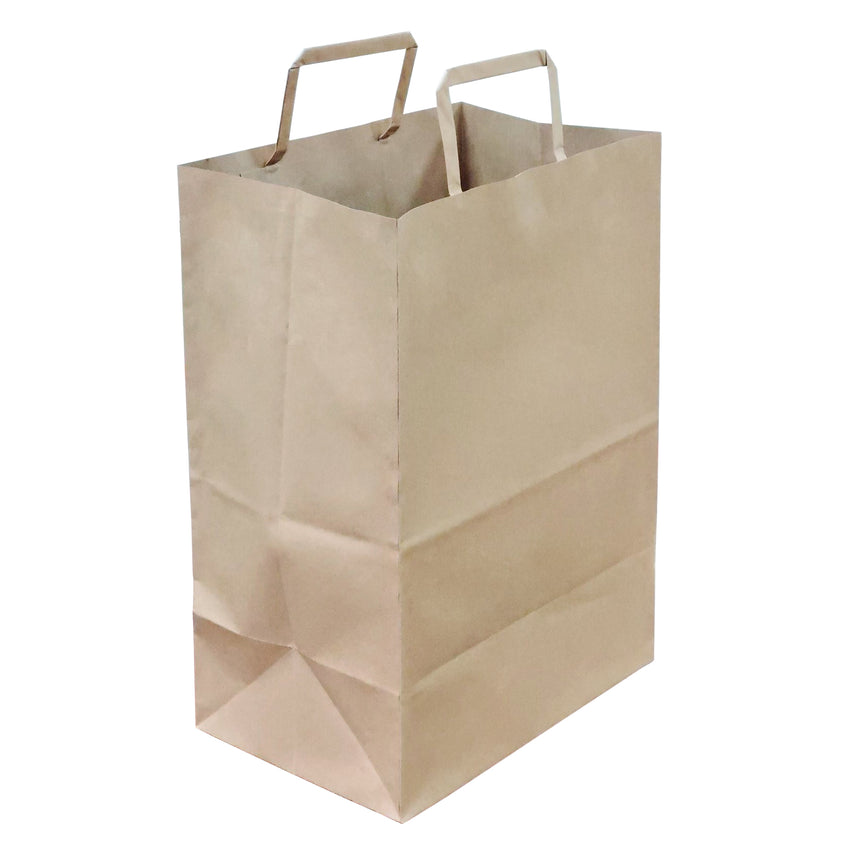 Bag Paper Flat Handle Plain