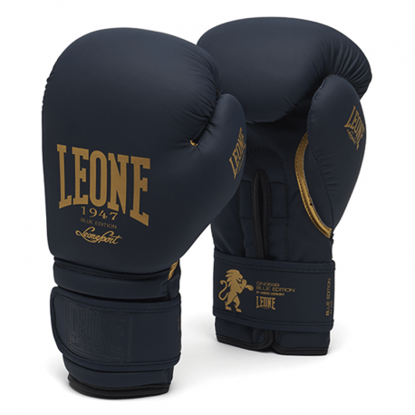 Pro Boxing Gloves