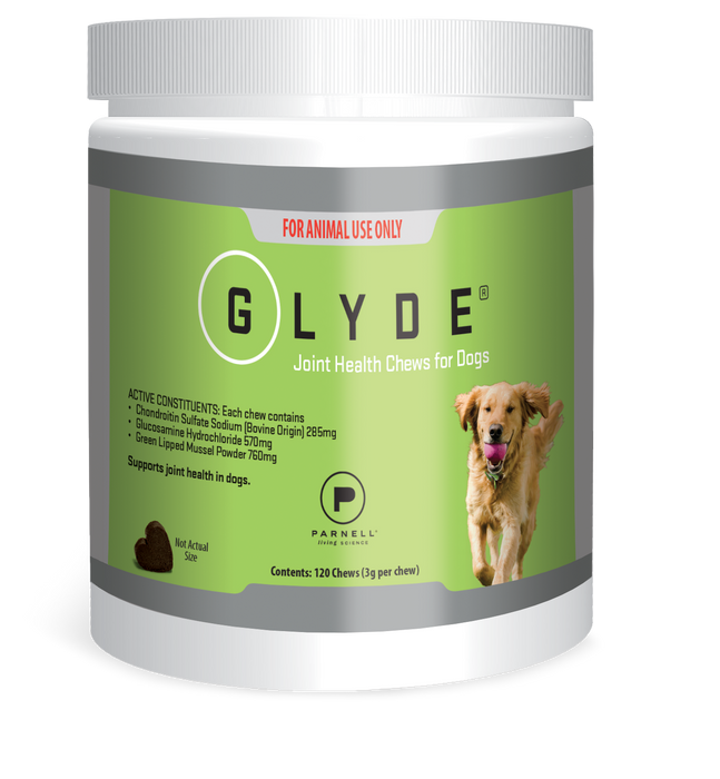 Glyde Joint Health Chews 120 Pack