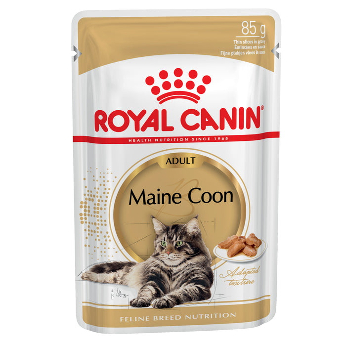 Royal Canin Maine Coon pouches 12 x 85g