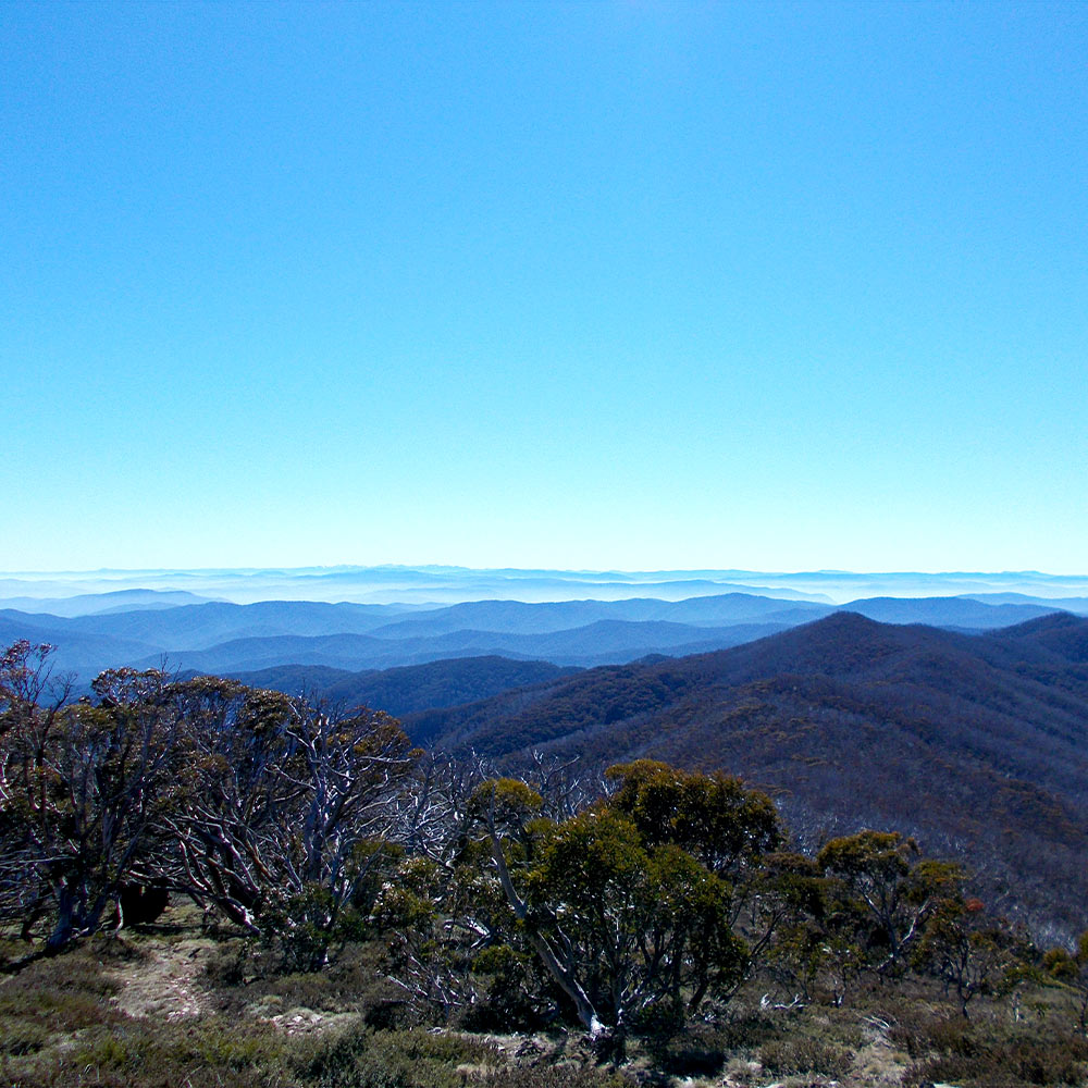 The Australian Snowy Mountains along the Australian Alps Walking Track. By Mont staff member Hilly