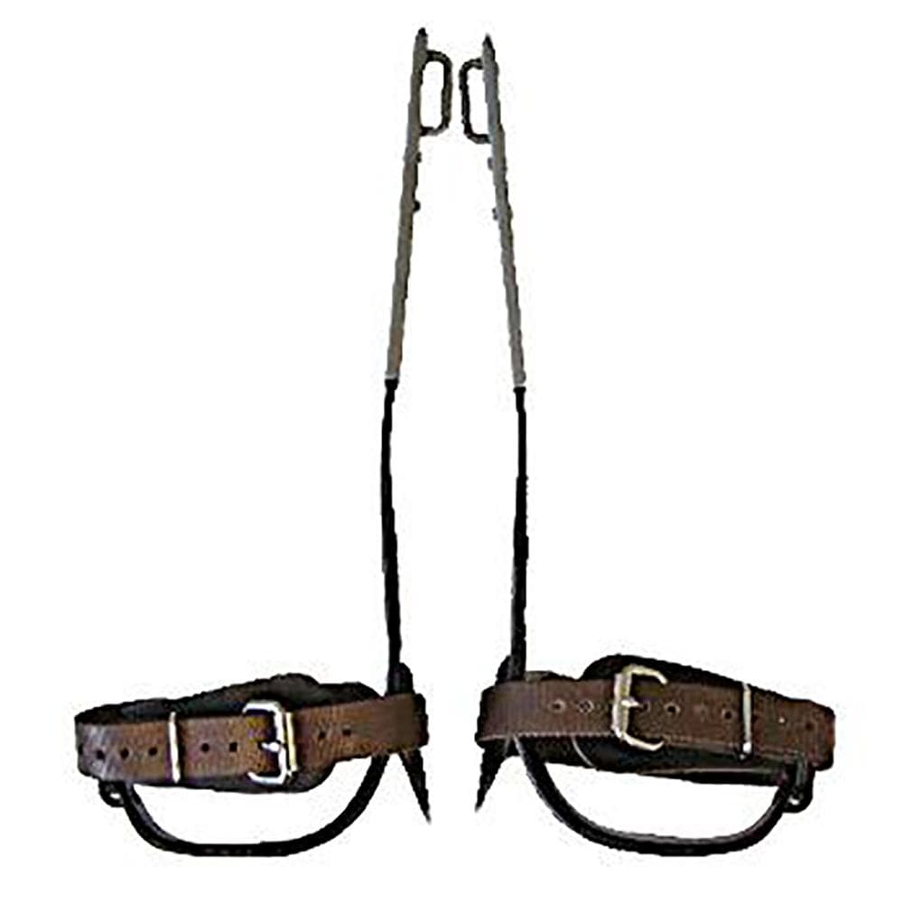 Buckingham Industrial Buckingham Steel Climbing Spurs Short BUCK-94089