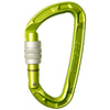 Edelrid Other Gear Edelrid Pure Screwgate Oasis EDL717700001380