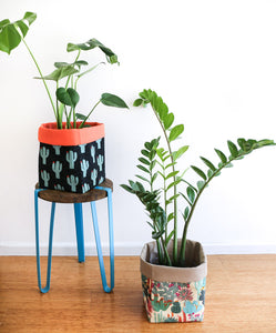large monstera and zz plants in fabric pot plant covers