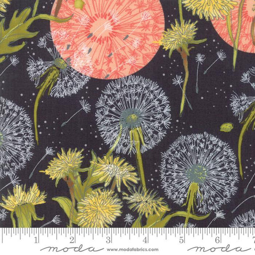 NEW! Dandi Annie -REMNANT 1 1/3 yard  - MODA - by Robin Pickens - Main print on Charcoal 48630-12