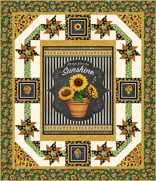 EXCLUSIVE! Sunshine & Pinwheels Quilt Kit - Always Face the Sunshine fabrics - Dan Morris for QT Fabrics - pattern by Pine Tree Country Quilts - RebsFabStash
