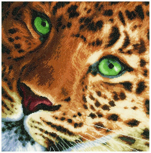 "Leopard - Aida 27 ct or 14ct Vervaco LanArte Counted Cross Stitch Kit, 13.75 x 13.5"", includes thread, fabric, needles, pattern - RebsFabStash"