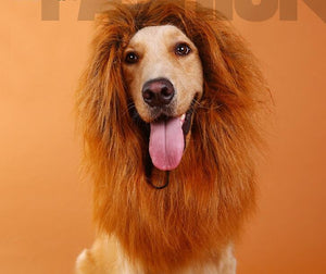 Lion Mane Wig for Large Dogs,pet wig lion head cover.