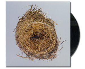 Wilco album A Ghost Is Born on black Vinyl LP from Bingo Merch Official Merchandise