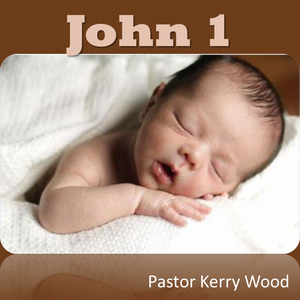 John 1: Before He Was Jesus