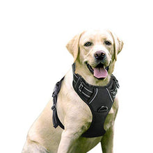 Load image into Gallery viewer, Rabbitgoo  Dog Harness No-Pull Pet Harness Adjustable Outdoor Pet Vest 3M Reflective Oxford Material Vest for Dogs Easy Control for Small Medium Large Dogs (Black, L)