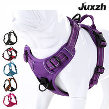 Load image into Gallery viewer, JUXZH Truelove Soft Front Dog Harness .Best Reflective No Pull Harness with Handle and Two Leash Attachments