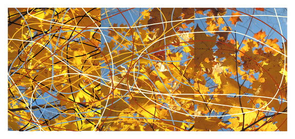 Autumn Leaves Triptych #2 - Photograph by Mona Mark