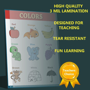 Children Learning Colors Chart Laminated Classroom Poster
