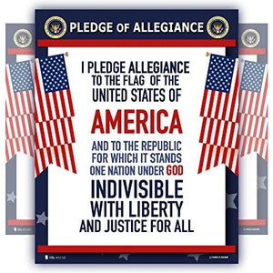 Pledge of Allegiance United States Laminated Classroom Teacher Poster - Young N' Refined