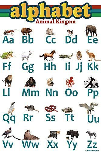 Young N Refined Abc Aphabet Poster Animal Kingdom Laminated edu 24x16 - Young N' Refined