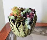 Fern Bowl Planter by Lisa D Pottery