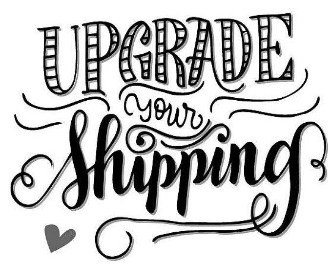 Upgrade Priority Shipping - Naked Panda Designs LLC