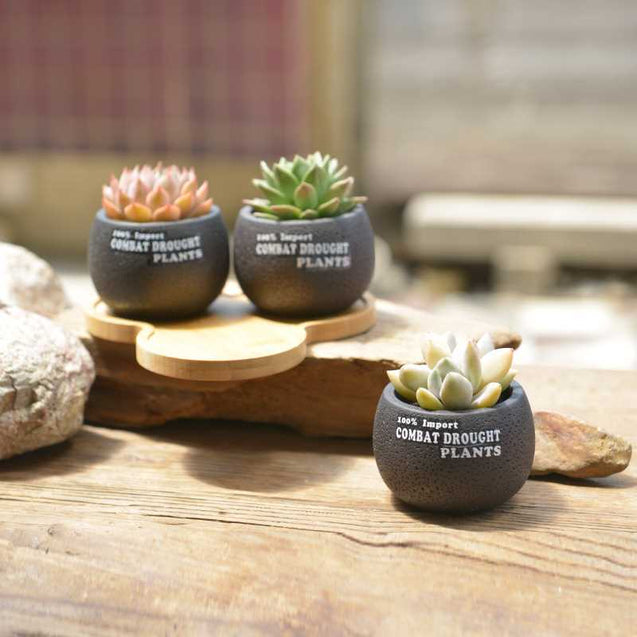 Plant Pots Breathable Black Small Pot With Triangle Bamboo Bracket Manufacturers Wholesale-14807