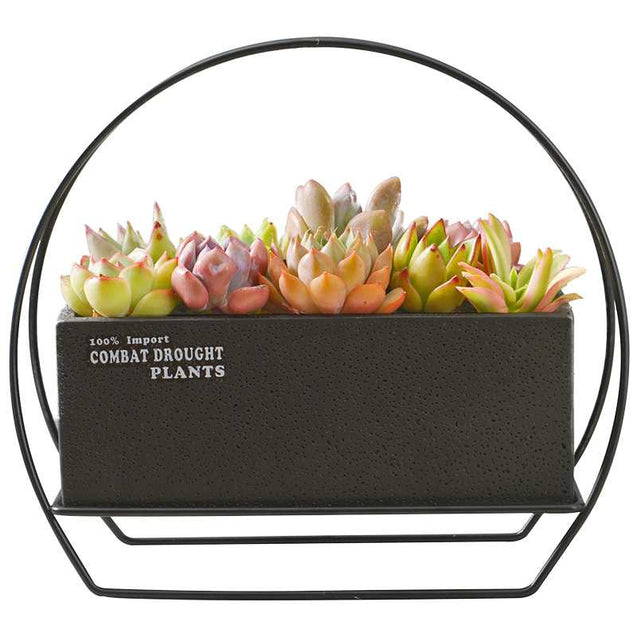 Rectangular Cement Flower Pot With Iron Frame- 14780