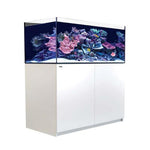 Aquarium Tanks & Accessories