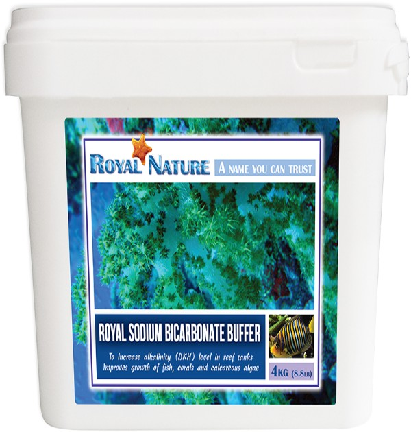 Royal Nature - Sodium Bicarbonate Bucket 8.82lb (4kg)