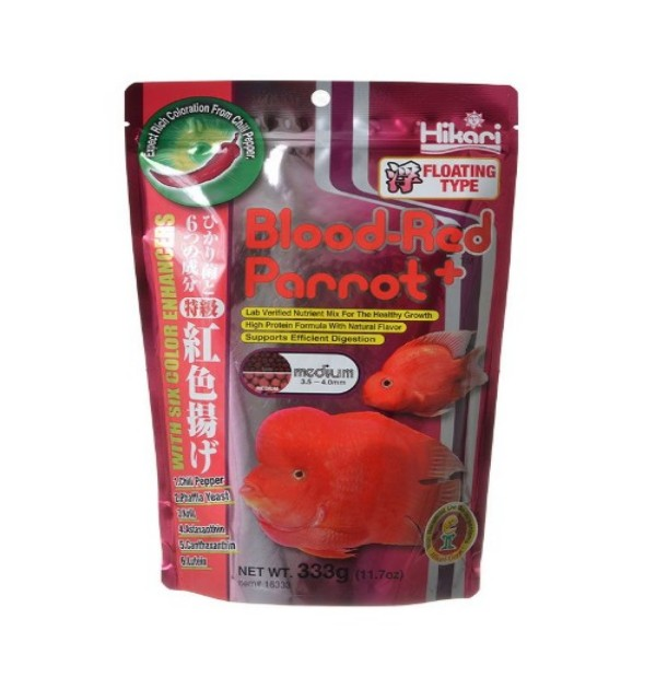 Blood Red Parrot (11.7 oz) - MEDIUM