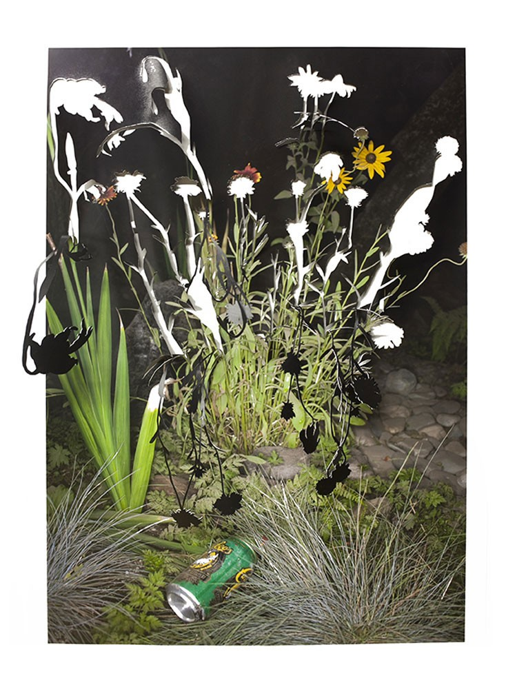 Sarah Anne Johnson, Drooping Flowers and Beer, 2016 © Sarah Anne Johnson / Stephen Bulger Gallery | FFOTO