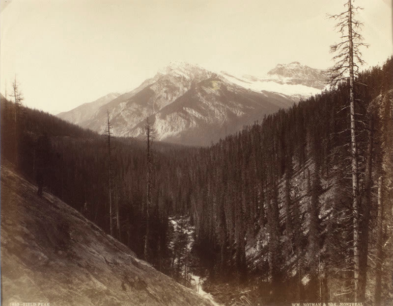 FFOTO-William Notman Studios-CNR, Western Canada, #1653, Field Peak
