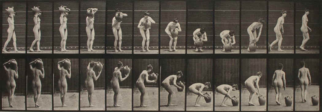 Animal Locomotion, Plate 225 - Eadweard Muybridge | FFOTO