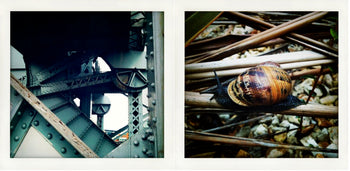 Trains Planes and Automobiles #2, Diptych [In collaboration with Chris Soos]