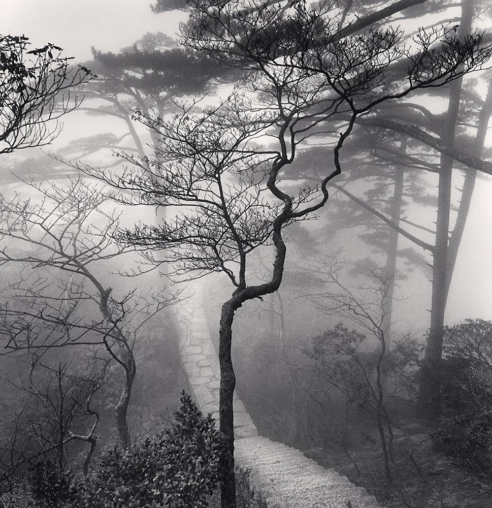 Huangshan Mountains, Study 20, Anhui - Michael Kenna