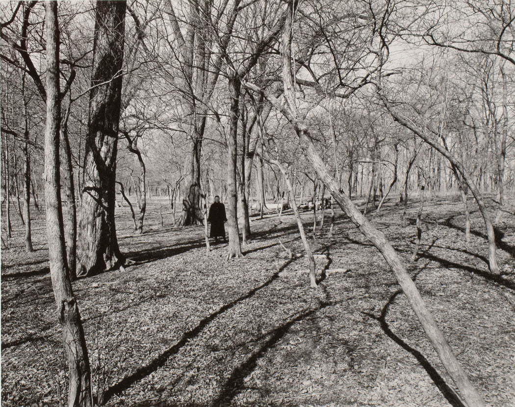 FFOTO-Harry Callahan-Eleanor in the Woods
