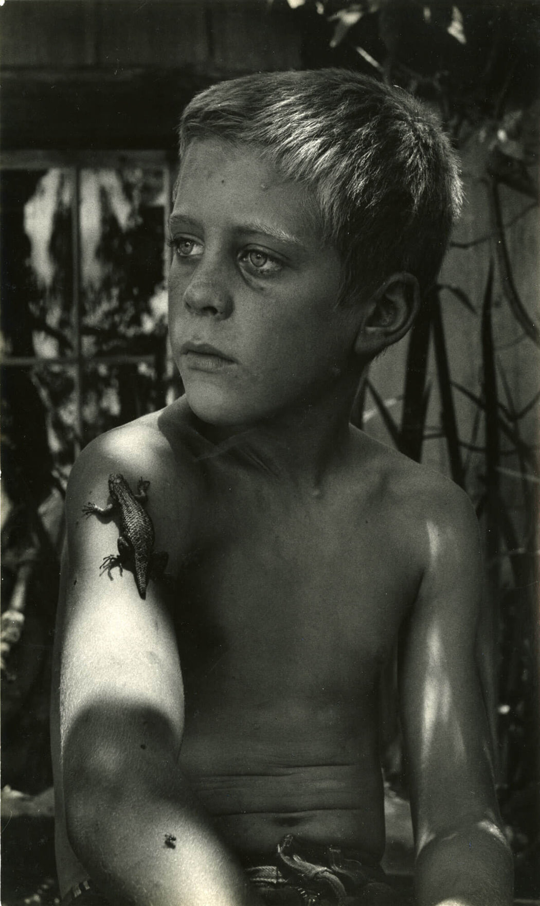 Untitled (boy and frog) - Wynn Bullock | FFOTO
