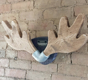 Glen - The scaffold board antlers