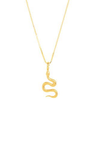 PYTHON SMALL | SHINY CHAIN
