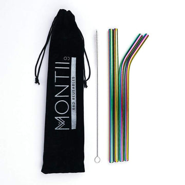 Stainless Steel Straw Set | Rainbow