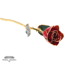 Load image into Gallery viewer, Precious 24K Gold Rose