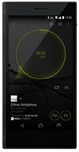 DP-CMX1(B) ONKYO digital audio player GRANBEAT SIM high reso 128GB