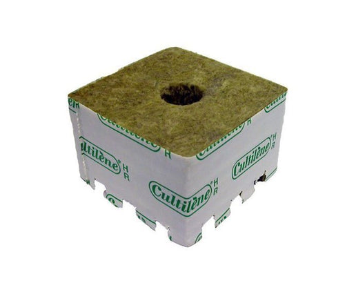 CULTILENE Start Block 38mm - 10x10x6.5cm - CITYFARMERS