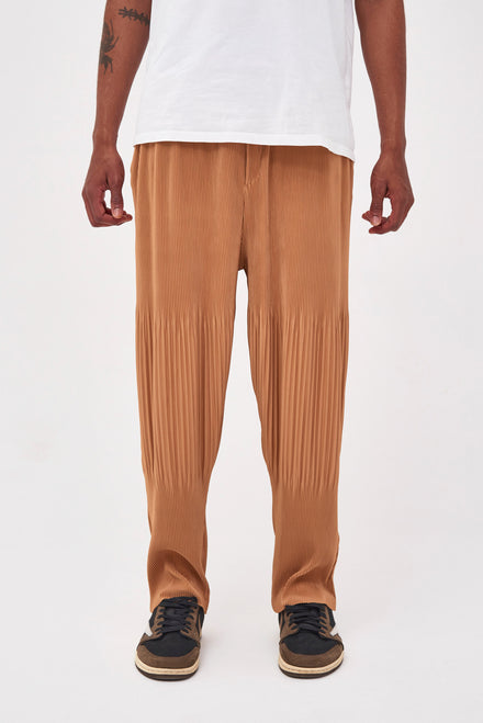 Tan Pleated Trousers In Relaxed Fit