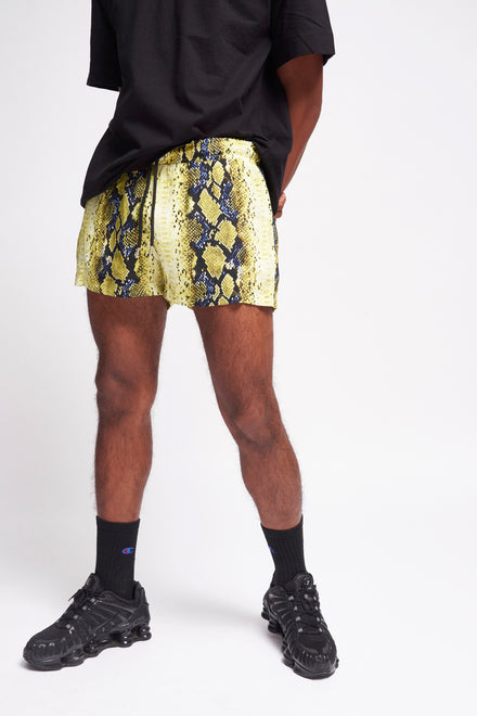 Yellow & Blue Snake Print Shorts