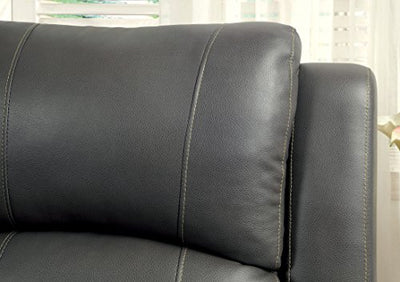 Furniture of America Robyn 2-Recliner Love Seat, Gray Finish