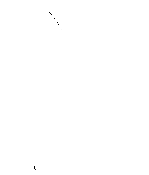 I.Am.Muscleriffic. Nip Slip Stringer - Black