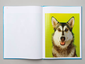 Dogs, Portraits and Objects by Neil Winokur