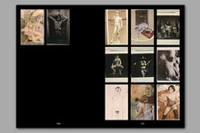 Load image into Gallery viewer, An Educational Archive of 2863 Slides by Frido Troost