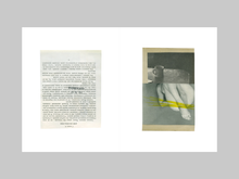 Load image into Gallery viewer, You Could at Least Pretend to Like Yellow by Katrien De Blauwer