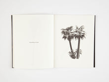 Load image into Gallery viewer, A Few Model Palm Trees by Bruno Roels