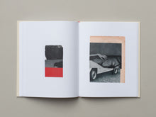Load image into Gallery viewer, Why I Hate Cars by Katrien De Blauwer