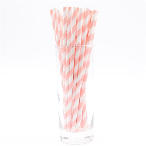 Biodegradable Disposable Paper Straws (25pcs)